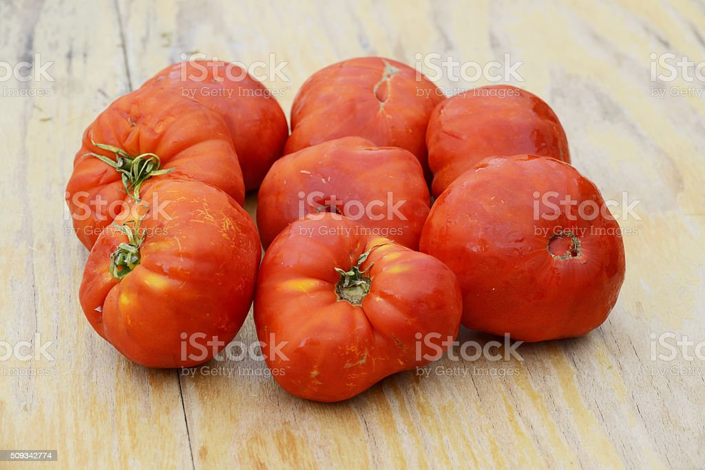 Real organic tomatoes placed on wooden table stock photo