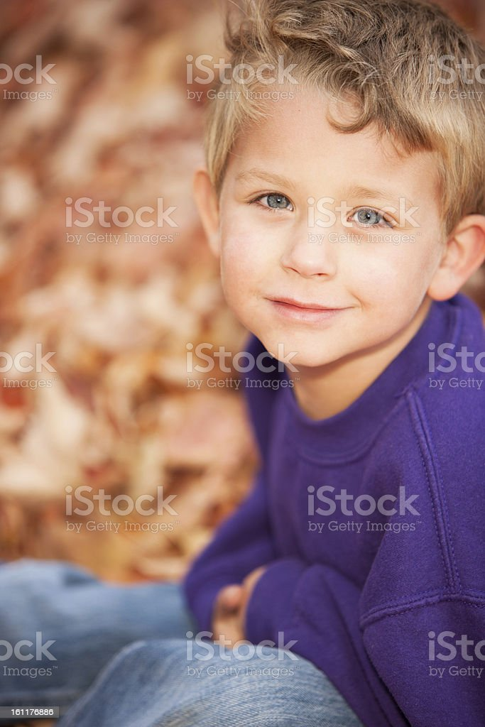 Real People: Smiling Caucasian Little Boy Autumn Leaves Head Shoulders royalty-free stock photo