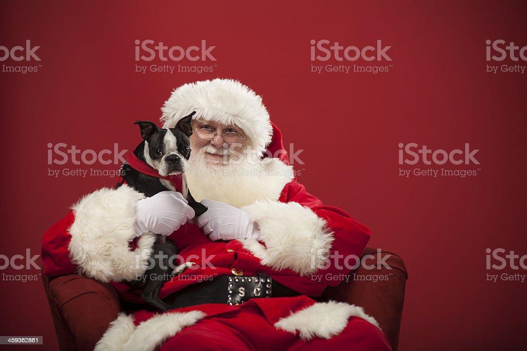 Real Santa holding a dog stock photo