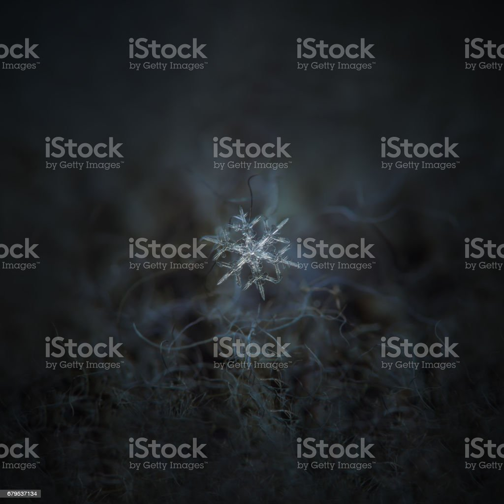 Real snowflake glitters on dark gray textured background stock photo