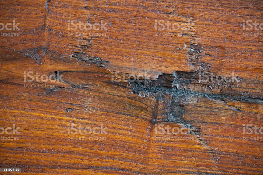 real wood samples of Rosewood, abstract background of rosewood stock photo