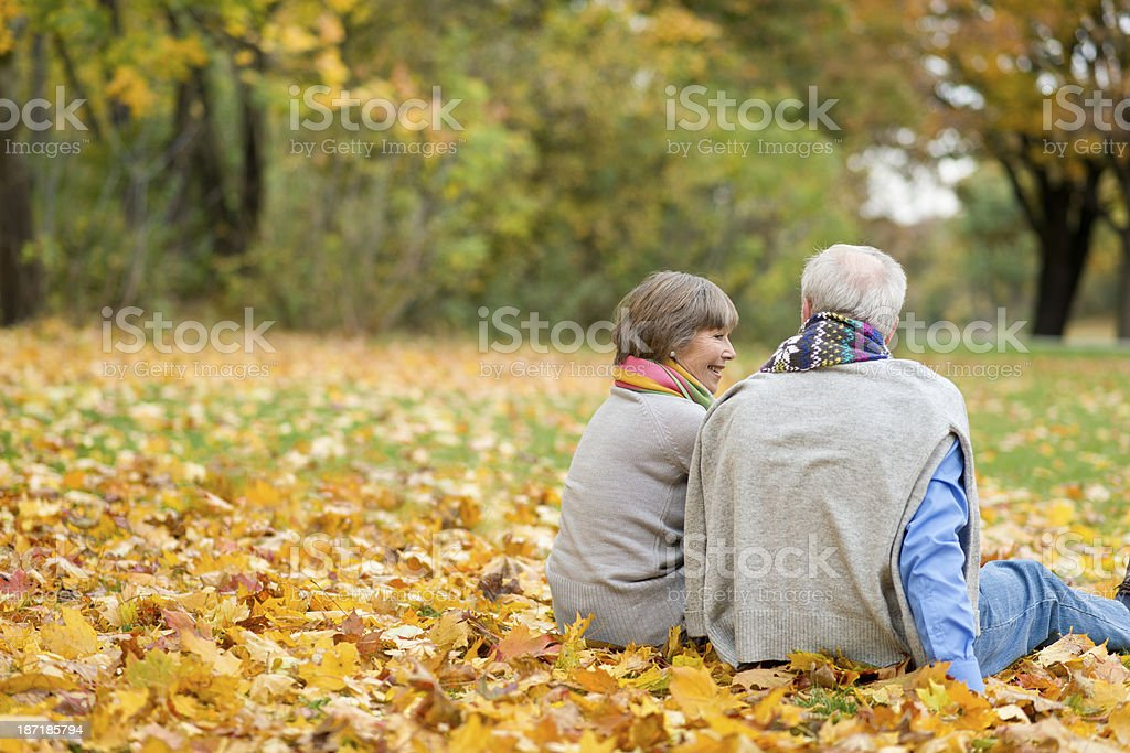 Rear view at Senior couple sitting on floor in park royalty-free stock photo
