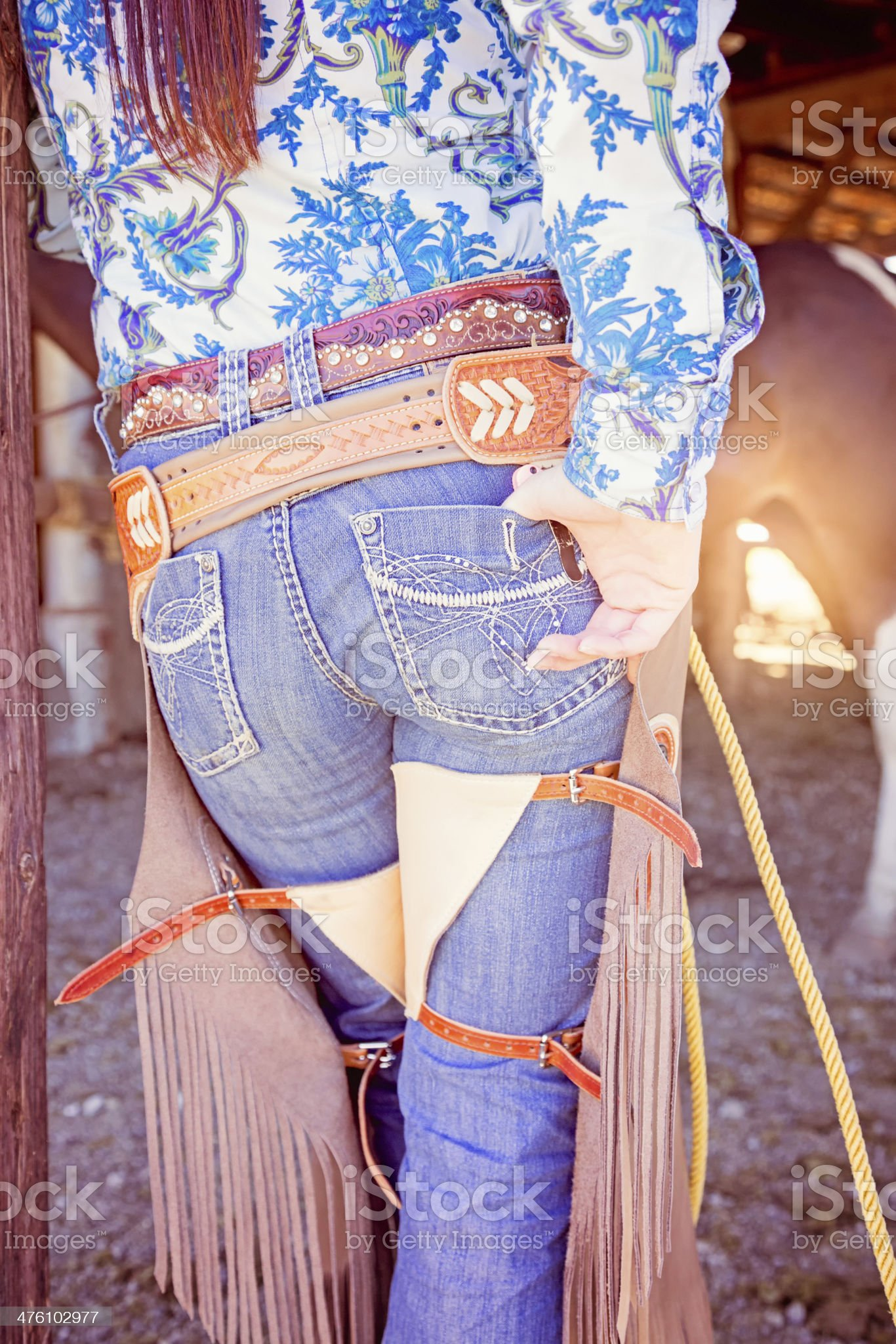 Rear View Cowgirl's chaps in corral royalty-free stock photo