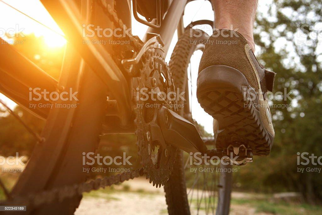Rear view man peddling bike stock photo