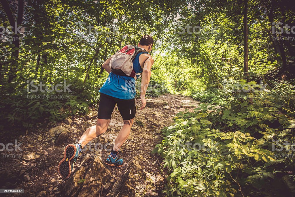 Rear view of a man running uphill in a forest stock photo
