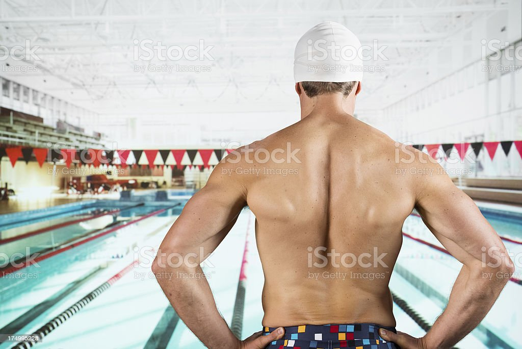 Rear view of a swimmer royalty-free stock photo