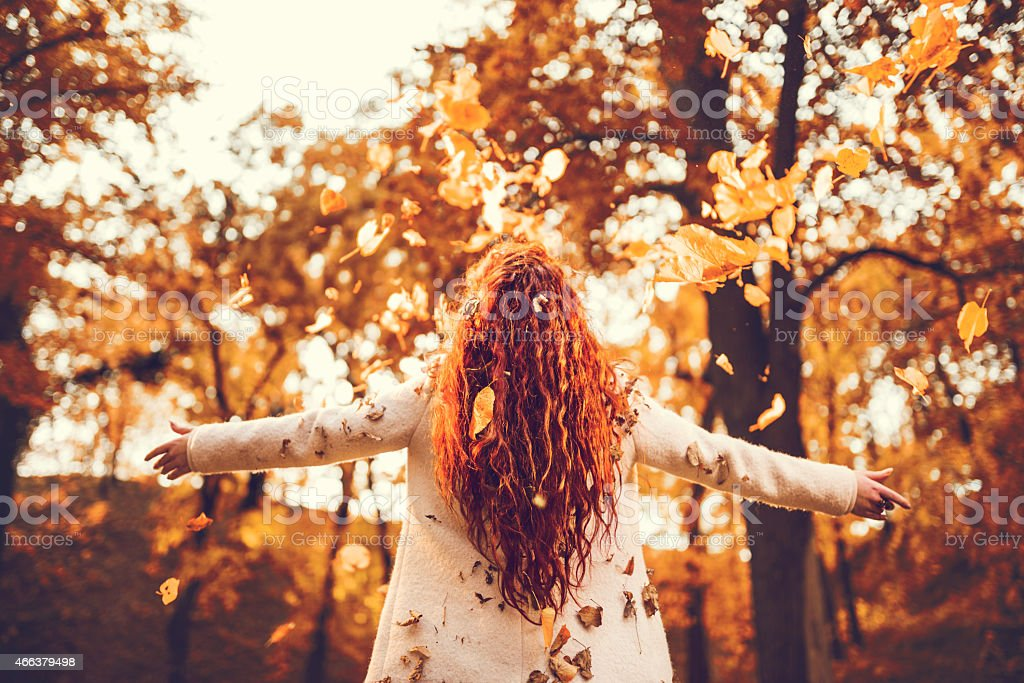 Rear view of a woman throwing autumn leaves. stock photo