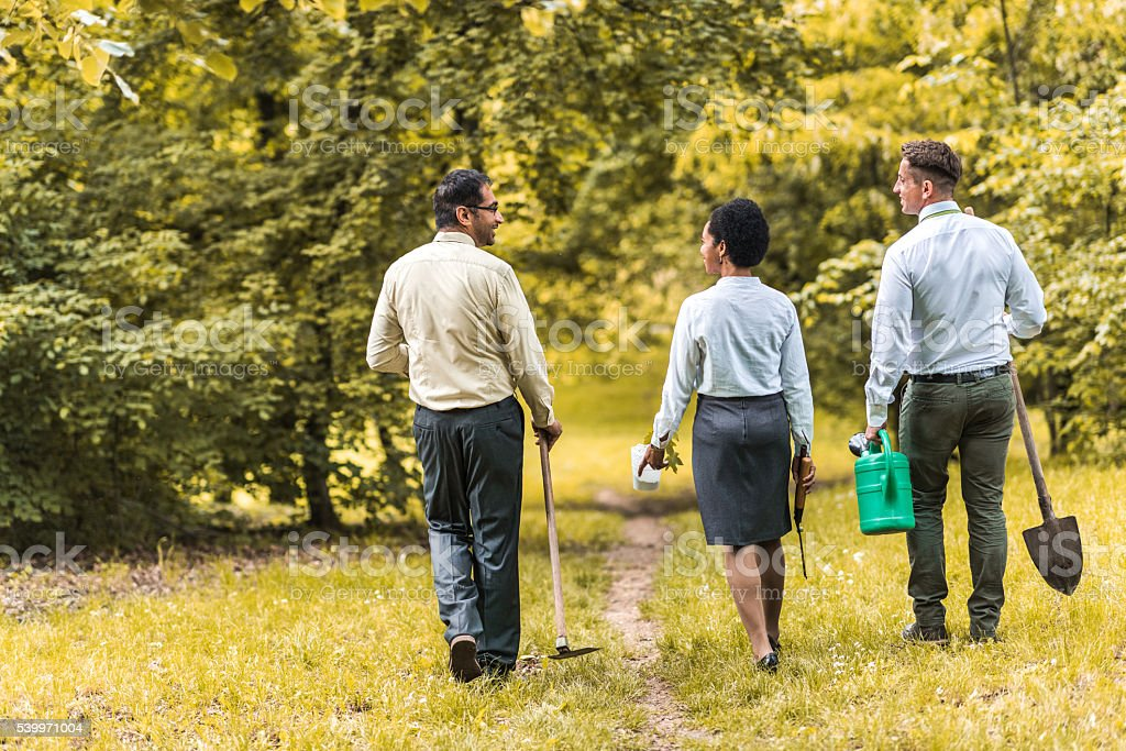 Rear view of business team walking in nature and communicating. stock photo