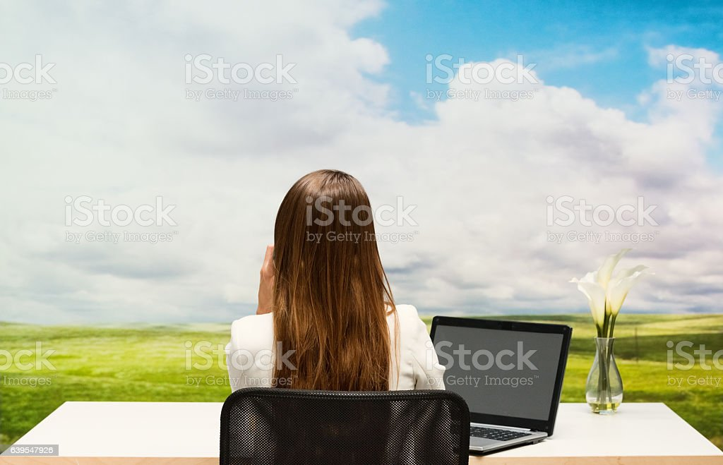 Rear view of businesswoman working outdoors stock photo