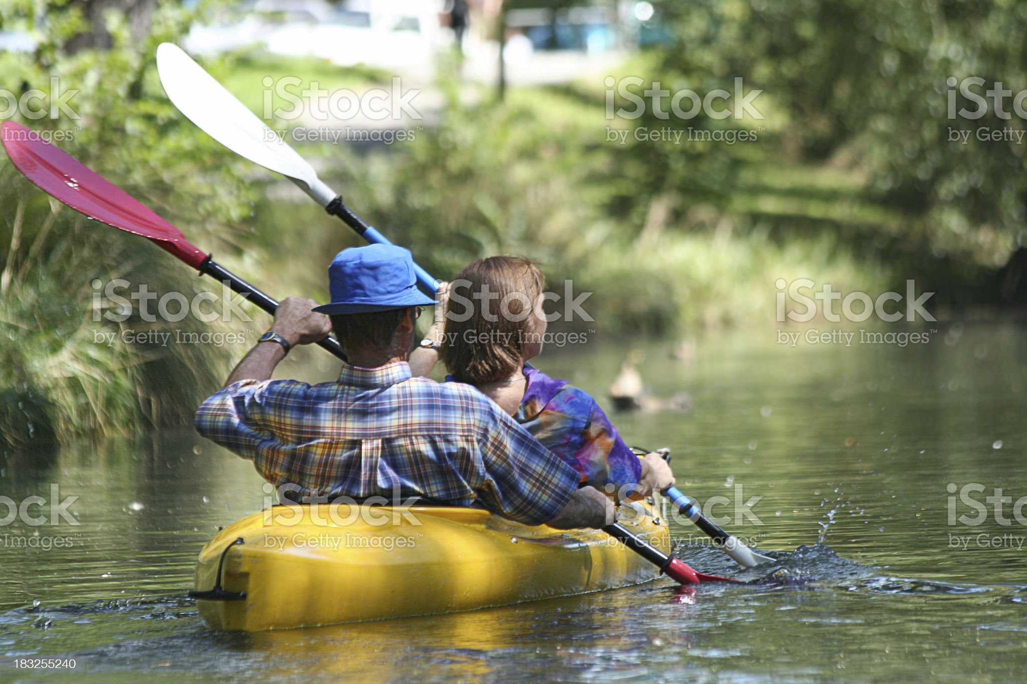 Rear view of couple kayaking with oars in sync royalty-free stock photo
