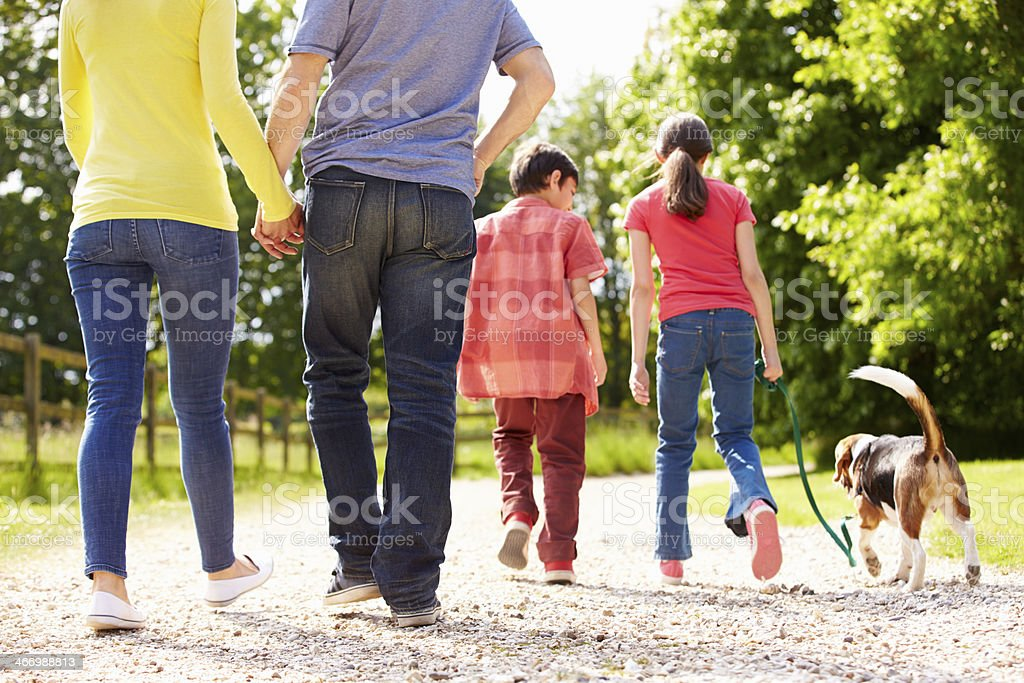 Rear View Of Family Taking Dog For Walk In Countryside stock photo