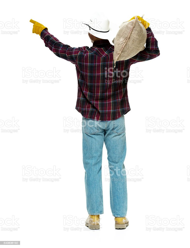 Rear view of farmer pointing away stock photo