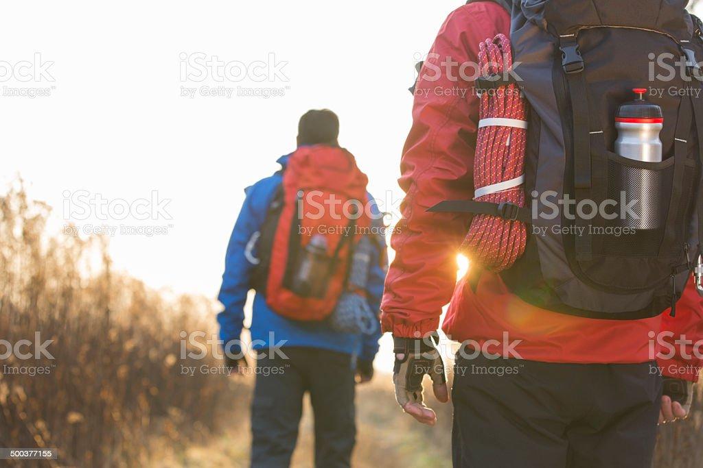 Rear view of male backpackers walking in field stock photo