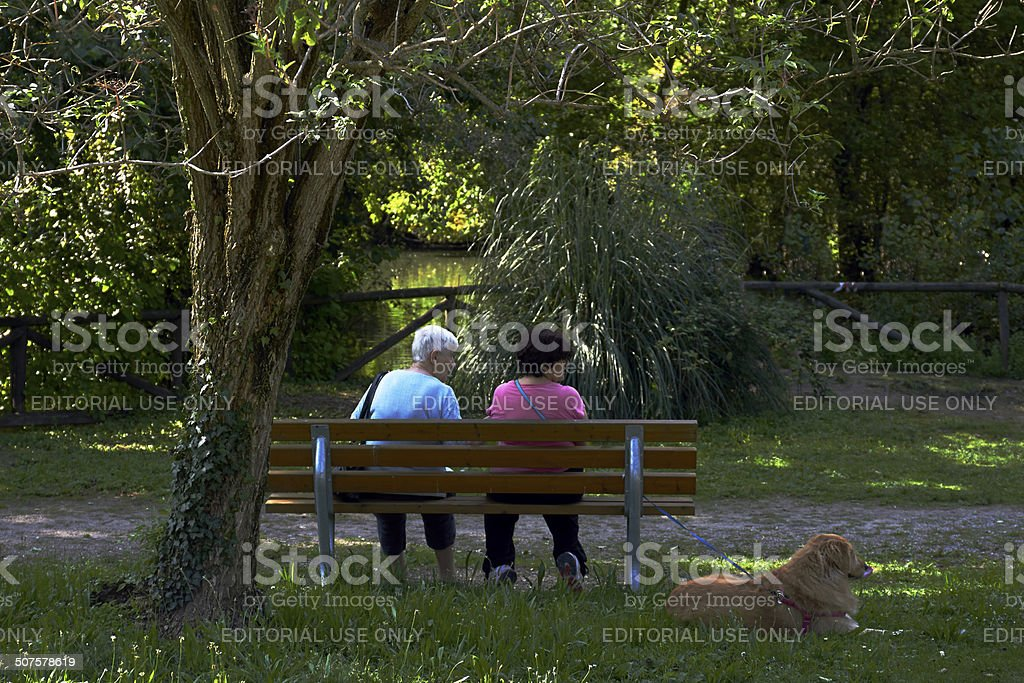 Rear view of People. Color Image royalty-free stock photo