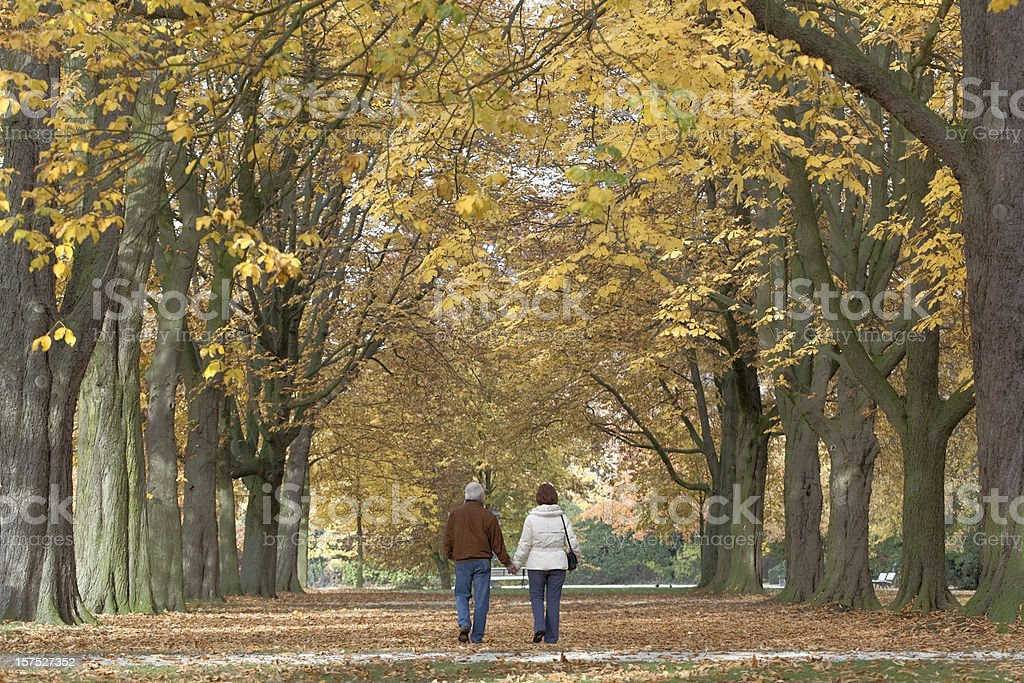 Rear view of senior couple under tree canopy in autumn royalty-free stock photo