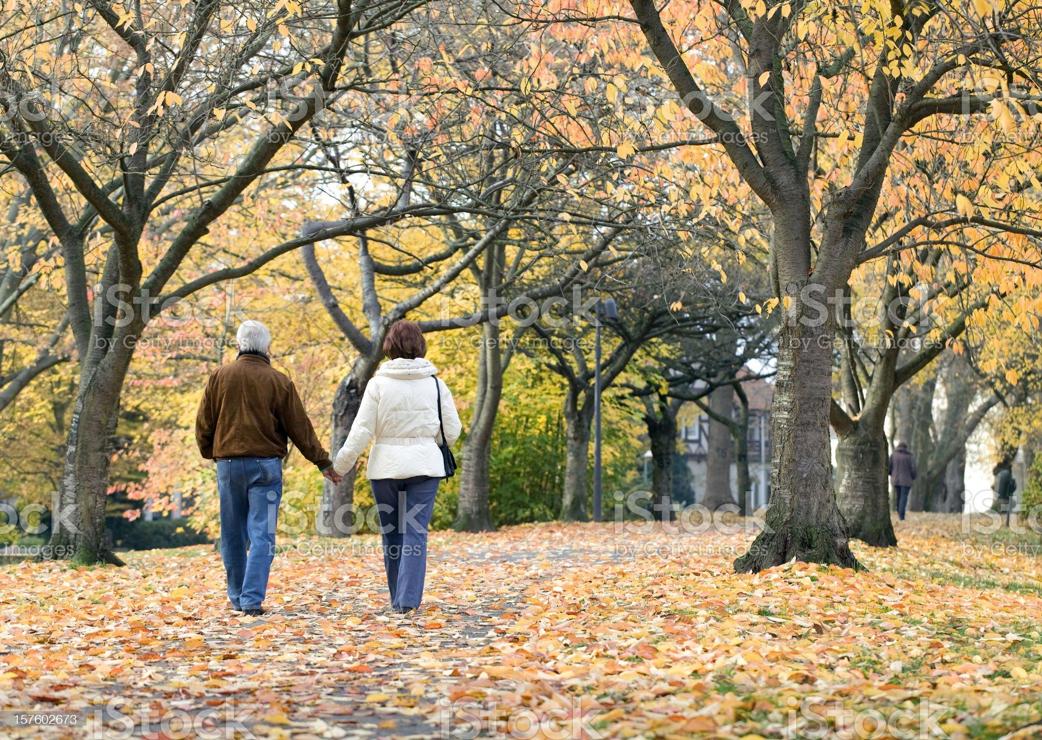 Rear view of senior couple under trees in autumn (XXL) royalty-free stock photo