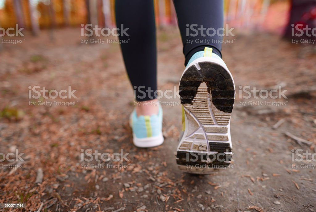 Rear view of sports shoe stock photo