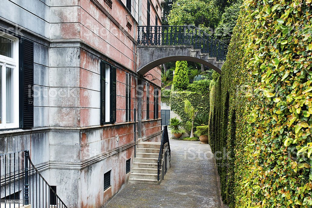 Rear view of  tropical monte palace in Madeira stock photo