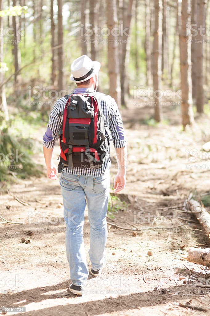Rear view of young backpacker hiking in the forest stock photo