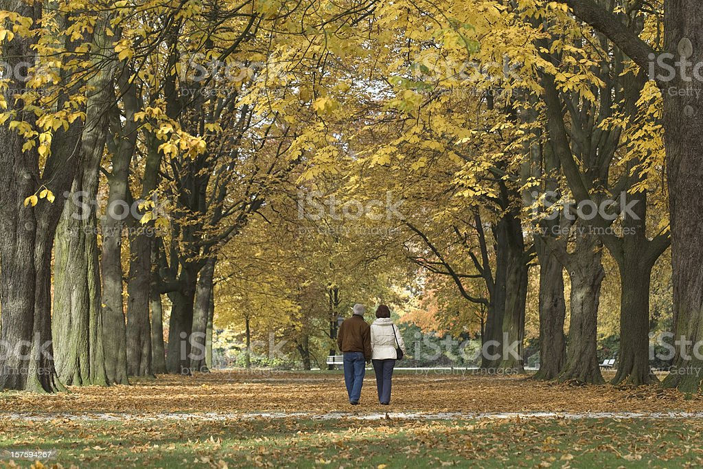 Rear view on senior couple under tree canopy in autumn royalty-free stock photo