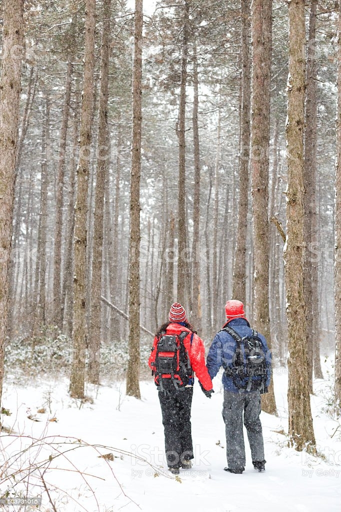 Rear view young couple walking in the winter forest stock photo