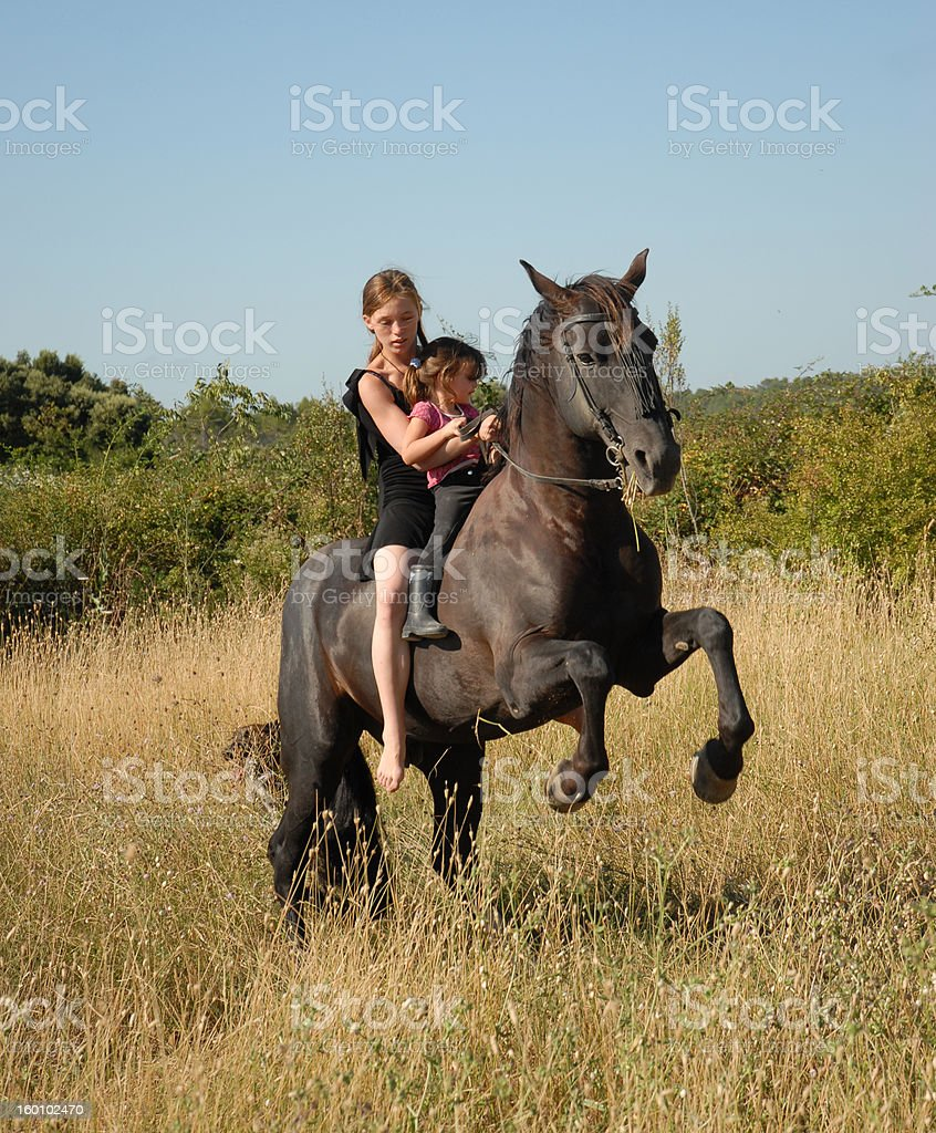 rearing stallion, teen and child stock photo
