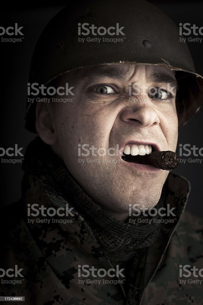 Rebel Leader royalty-free stock photo