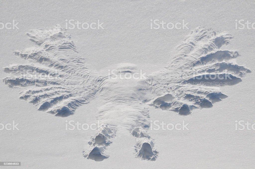 Rebirth of Snow Angel stock photo