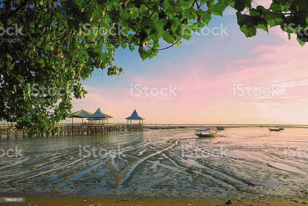 Receding shore with green leaves frame stock photo