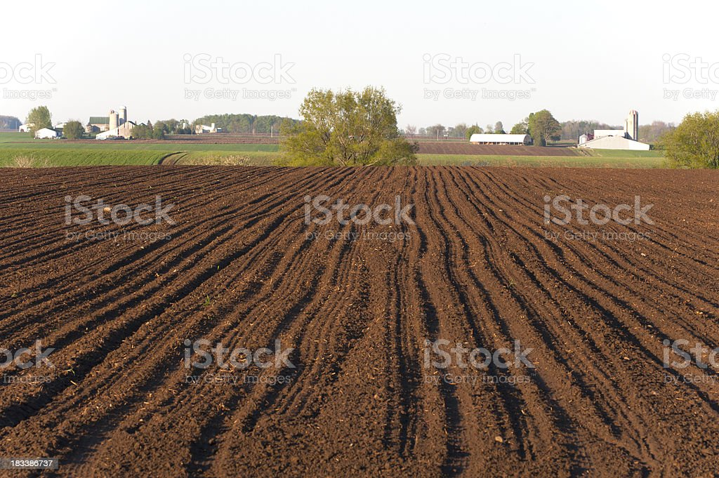 Recently Planted Farm Field stock photo