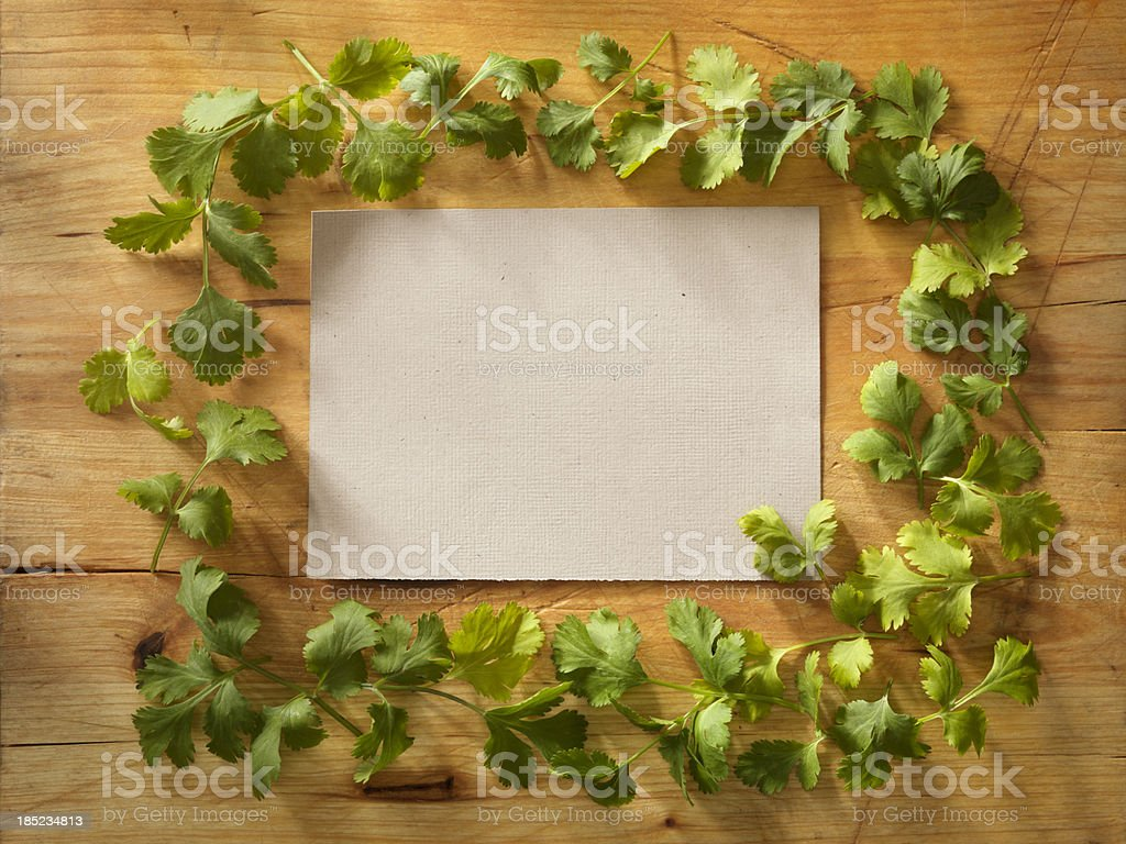 Recipe Card with Fresh Cilantro stock photo