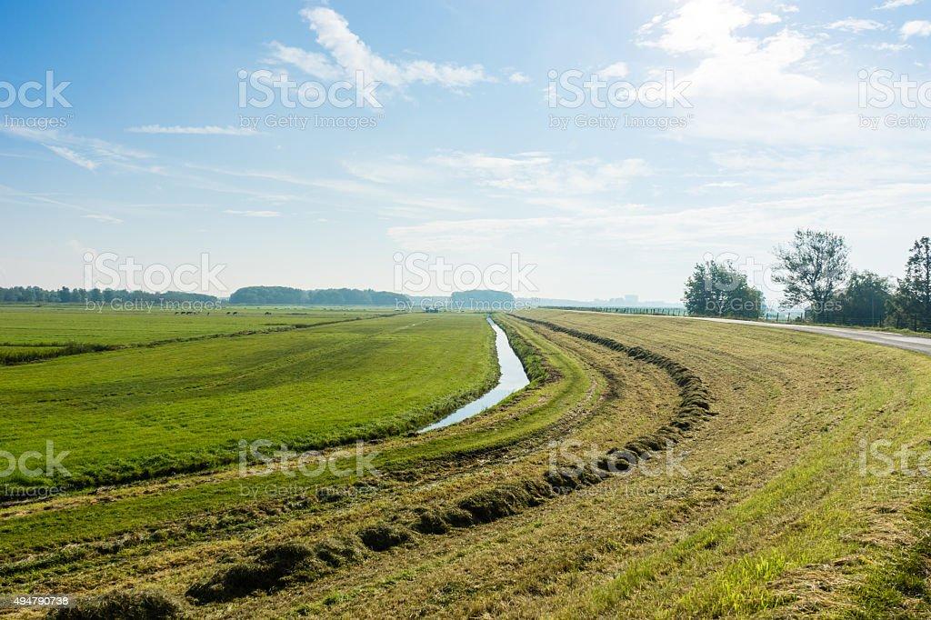 Reclaimed Land stock photo
