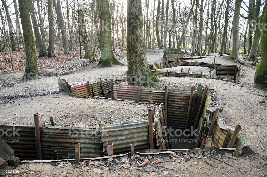 Reconstructed WWI trenches in forest royalty-free stock photo