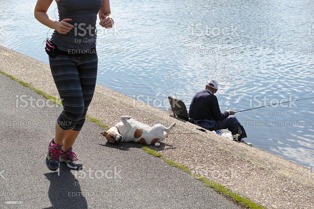 Recreation along a river embankment. stock photo