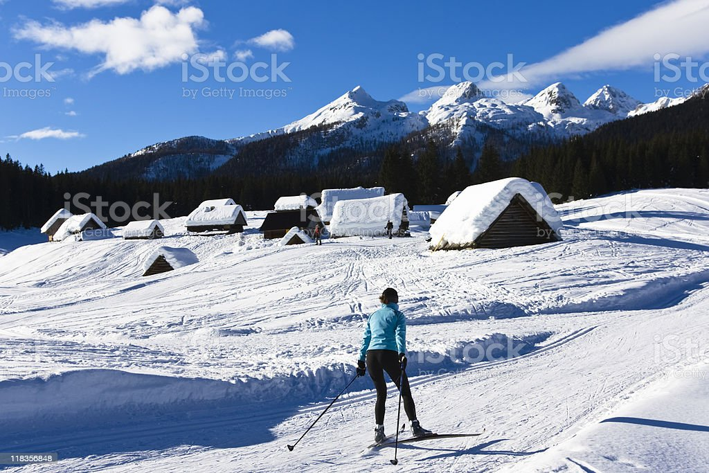 recreational cross-country skiing royalty-free stock photo