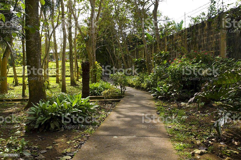 Recreational Footpath stock photo