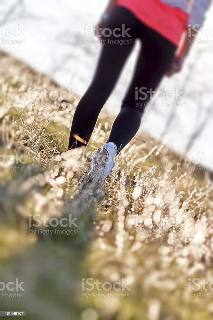 Recreational  walks in nature early i morning improves your health stock photo