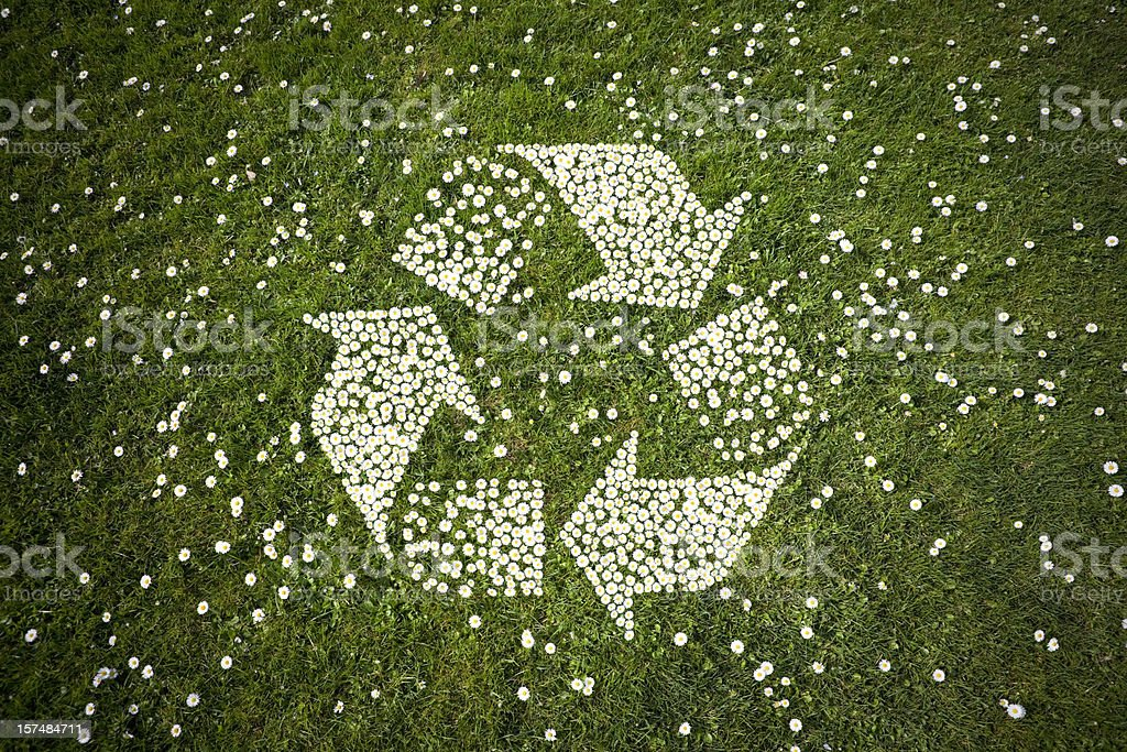 Recycle Logo in Daisies on Grass stock photo