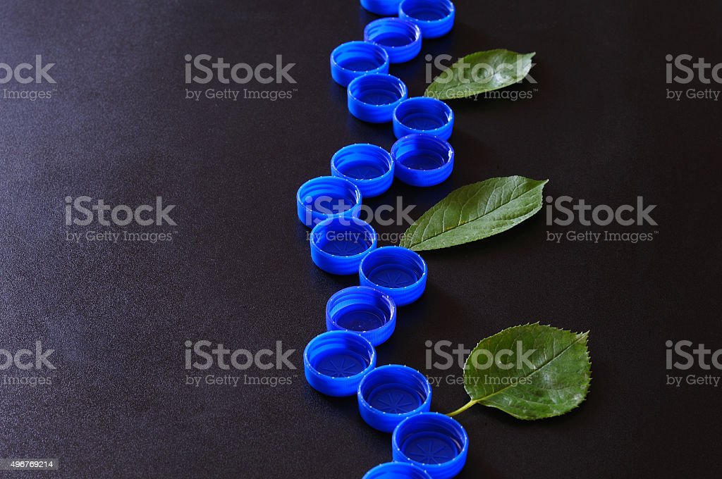 recycled branch with real leaves stock photo