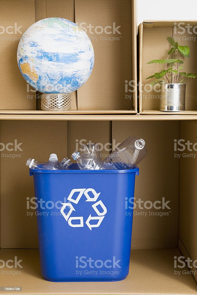 A recycling bin globe plant and cardboard boxes royalty-free stock photo