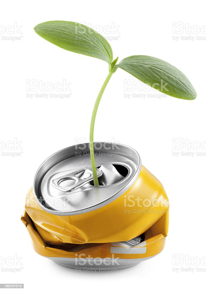 Recycling. Seedling into a can. stock photo