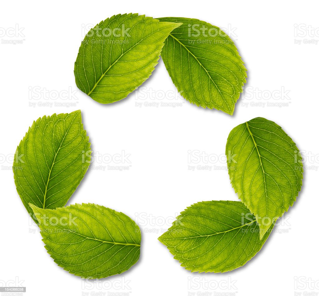 recycling symbol made of leaves stock photo