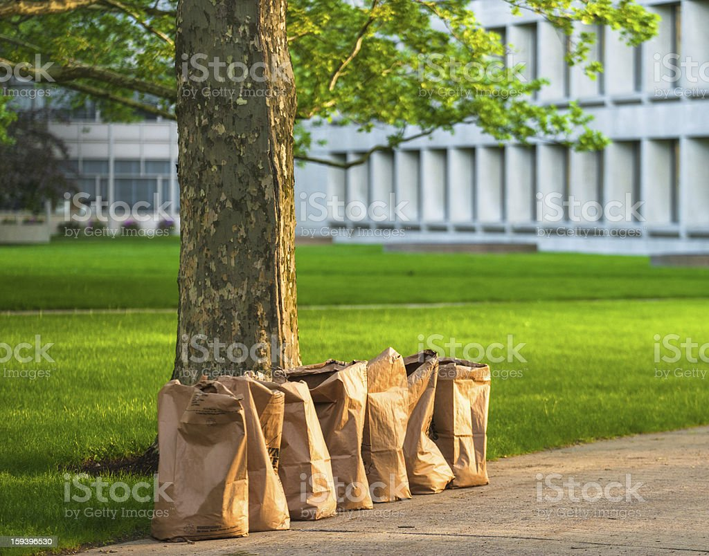 Recycling yard waste paper bags stock photo