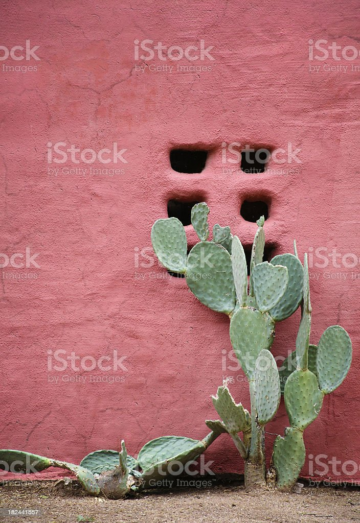 Red Adobe Wall royalty-free stock photo