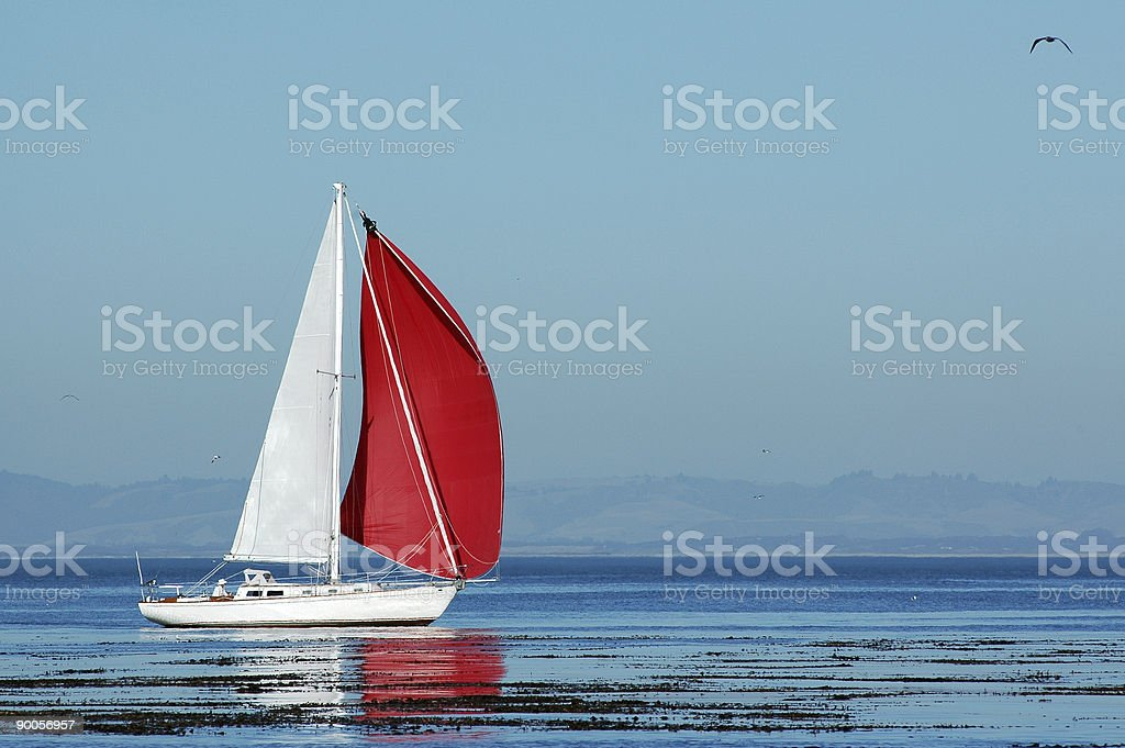 red an white sailboat on Monterey Bay, California stock photo