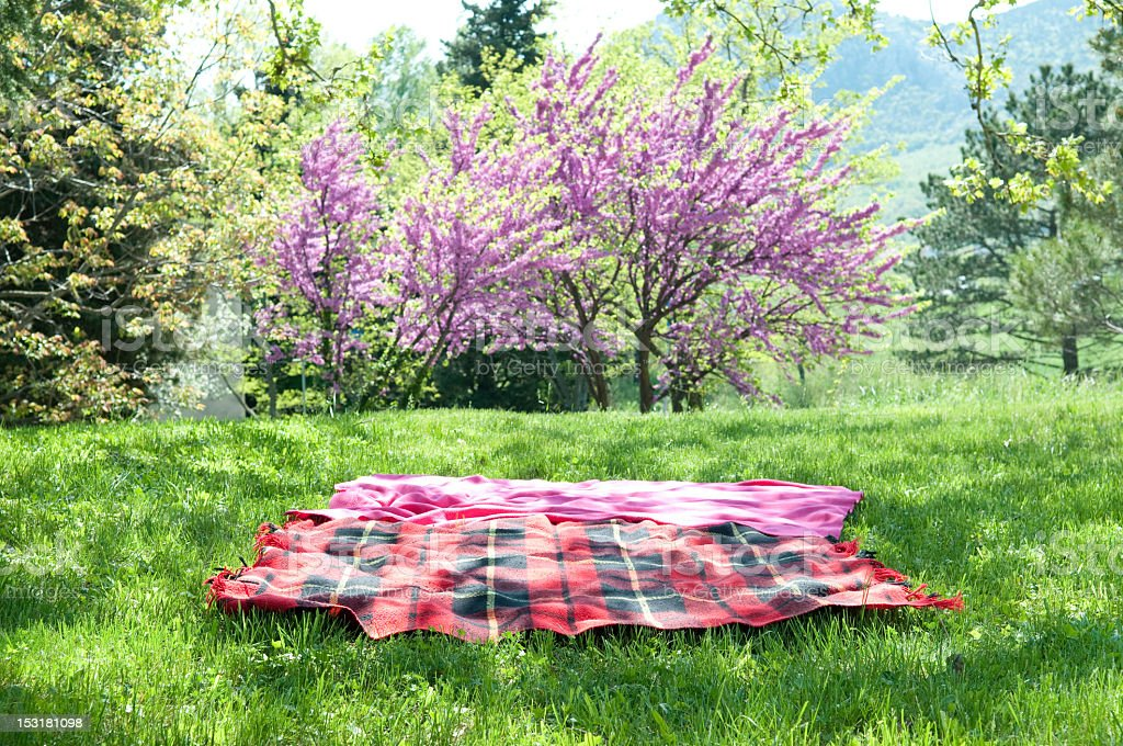 A red and black plaid picnic blanket stock photo