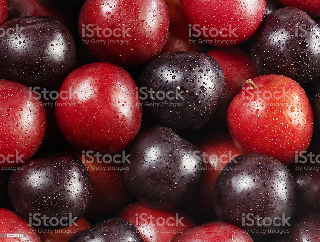 Red and Black Plums royalty-free stock photo
