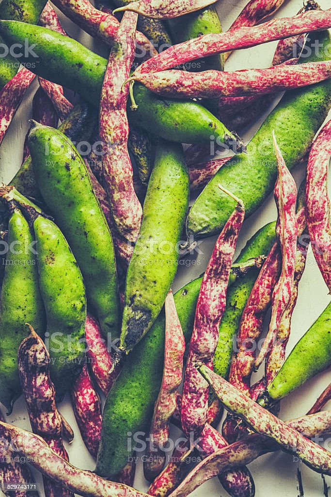 Red and fava beans stock photo