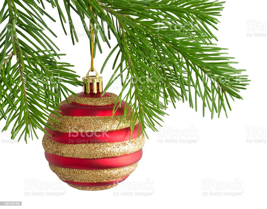 Red and golden Christmas ball ornament on a tree royalty-free stock photo