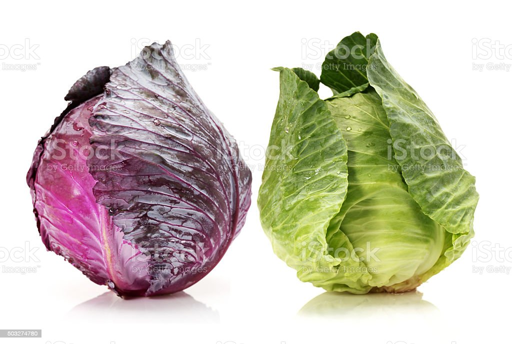 Red and green cabbage stock photo